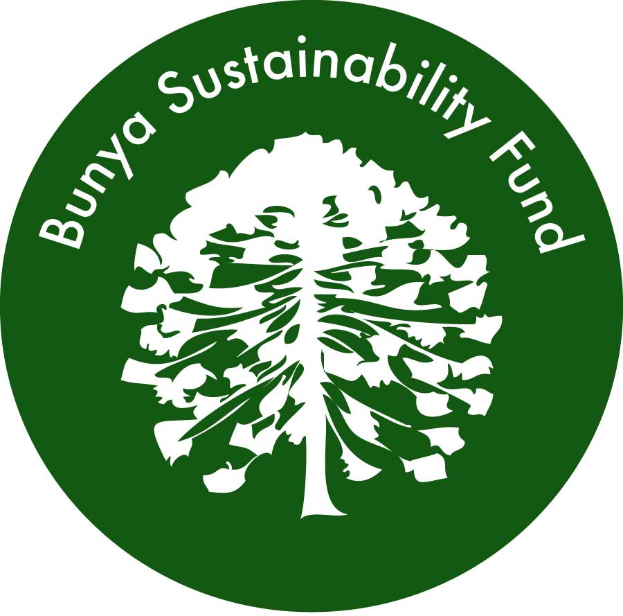 Bunya Sustainability Fund Logo Wordpressit Loretta Faulkner Design Concept